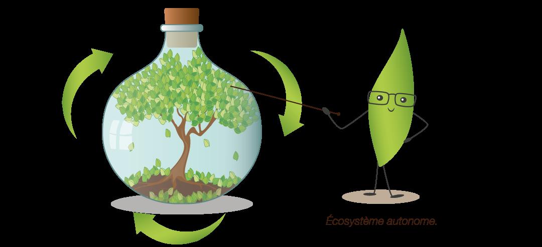Ecosystème autonome